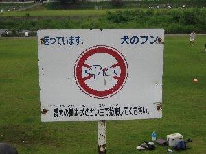 Saigawakanban_1